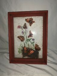 Vintage Framed Butterfly Taxidermy Shadowbox $21.00