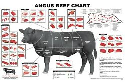 Angus Beef Butcher Chart Laminated Poster. Home Decor Poster Vintage Wall Art $17.39