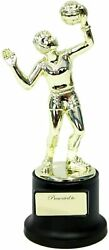 Novelty Girls Volleyball Trophy for Kids or Adults with Presented to Label5 In $12.88