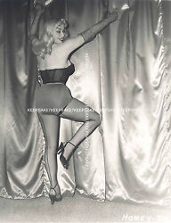 CLASSIC EXOTIC STRIPTEASE DANCER HONEY BAER LEGGY IN FISHNETS 8X10 PHOTO S-HB1 $7.00