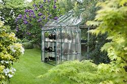 Greenhouse Plant Large Walk In Clear Cover 12 Shelves Stands 3 Tiers Racks Herb