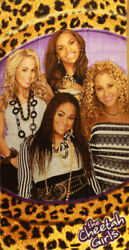 The Cheetah Girls Beach Towel $12.99
