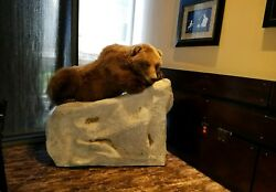 Life Size Mount Home Lodge Cabin Decor with Fake Rock Taxidermy