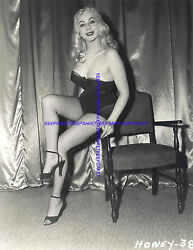 CLASSIC EXOTIC STRIPTEASE DANCER HONEY BAER LEGGY IN FISHNETS 8X10 PHOTO S-HB5 $7.00
