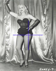 CLASSIC EXOTIC STRIPTEASE DANCER HONEY BAER LEGGY IN FISHNETS 8X10 PHOTO S-HB6 $7.00