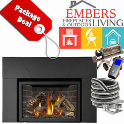NAPOLEON XIR4 PACKAGE DIRECT VENT KIT 20' GAS FIREPLACE INSERT SURROUND GREY