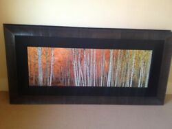 Peter Lik Harmony 1.5 Meter Framed Signed Limited Edition #'d950 COA
