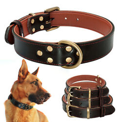 Black Dog Leather Collar Heavy Duty for Medium Large Dogs Gold Buckle Labrador $15.99