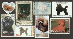 TOY POODLE ** Int#x27;l Dog Postage Stamp Art Collection**Great Gift Idea $9.99