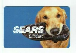 Sears Gift Card Cute Dog with Slipper Golden Retriever Older No Value $1.49