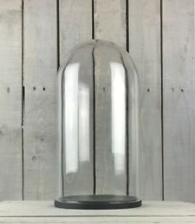 Large Glass Dome Cover Cloche Display With Black Wooden Base 41.5x16cm $80.03
