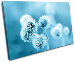 Dandelion Floral Ice Flower Plant Canvas Art Picture Print Decorative Photo Wall