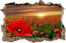 WALL STICKERS Hole in the wall Flowers POPPIES Sticker Vinyl Decor Mural 29 $13.99