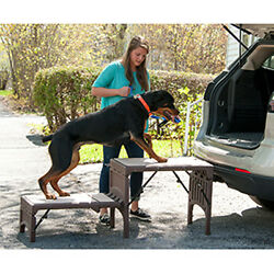 Pet Ramp Stairs by Pet Gear Free Standing Foldable Pet Stairs $178.89