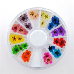 12 Colors Real Dried Flowers Nail Art Decoration DIY Tips Decor Manicure Wheel
