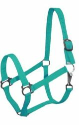 TEAL BLUE Thick Nylon Halter with Throat Latch Clip Horse Size 628X