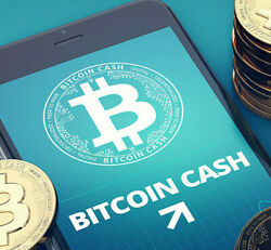 Bitcoin Cash Mining Contract 4 Hours  BCH in Hours not Days 0.04 BCH Guaranteed $13.88