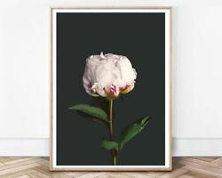 Peony Prints Floral Wall Vintage Home Decor Art Signature Wall Posters Print $17.99