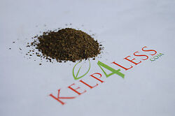 North Altlantic Fresh dry Kelp MEAL 5 lbs FREE SHIP Seaweed Soil Fertilizer Feed $22.94