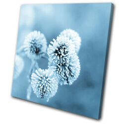 Ice Flower Dandelion Aqua Blue Floral SINGLE CANVAS WALL ART Picture Print