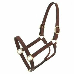 Royal King Leather Track Halter - Brown - Horse - 44-2046 -