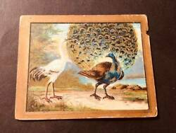 1910 T57 Turkish Trophies Cigarettes Fable Series The Peacock and the Crane
