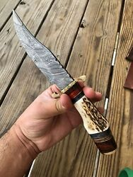CUSTOM HAND FORGED DAMASCUS STEEL HUNTING KNIFE W Stag Handle Brass Guard $39.95