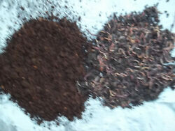 Super Red European Night Crawlers 1lb avg250  compost worms Avg.size 3quot; to 5quot;  $20.00