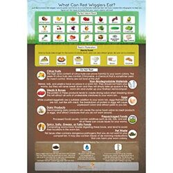 quot;What Can Red Wigglers Eatquot; Infographic Refrigerator Magnet For Live Worm Bins $17.99