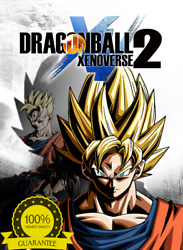 Dragon Ball Xenoverse 2 PC Steam Account Full Access Fast Delivery 🔥 $5.99