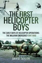 The First Helicopter Boys by David Taylor GBP 18.79