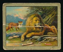 1910 T57 Turkish Trophies FABLE SERIES (51-100) -The Fox & The Lion