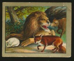 1910 T57 Turkish Trophies FABLE SERIES (51-100) -The Lion & His Three Councilors