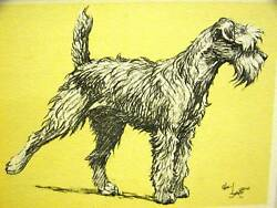 Cecil Aldin 1930 KERRY BLUE TERRIER Dog Print Matted