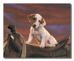 Western Cowboy Saddle Rope Dog Wall Picture Art Print $11.97