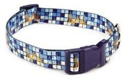 New NWT Zack amp; Zoey Dog Collar Electric Charged Blue Orange 5 8quot; x 10 16quot; Medium $9.99