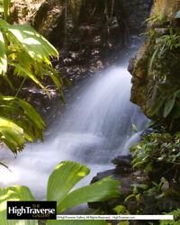 Exotic Tropical Waterfall-Color Fine Art Photo-8x10-COA-SIGNED!