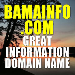BAMAINFO.COM DOMAIN NAME Great Alabama Information-related domain only 8 letters