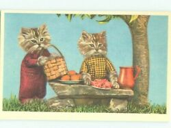 foreign Pre-1980 HUMANIZED CAT HAVING A PICNIC AC6837