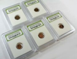 Slabbed Lot of 5 Ancient Roman Widows Mite Sized Bronze Coins c 50 BC - 400 AD b