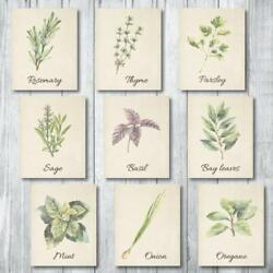 Botanical Prints Wall Decor Kitchen Art Herbs Leaves Set UNFRAMED Pictures $22.99