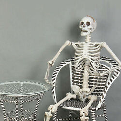 5.6Ft Halloween Skeleton Full Life Size Human Skull Holiday Tricky Haunted Props $48.95