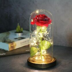 Red Light Up Led Luminous Mothers Day Rose In Glass FREE SHIPPING $19.99
