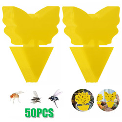 50x Sticky Fruit Fly Trap Fungus Gnat Traps Killer Protect Plant Indoor Outdoor $13.80