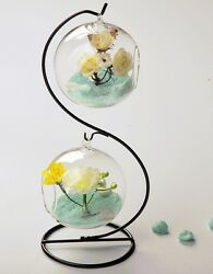 Glass hanging globe terrarium for air plant moss wedding gift candle decor stand $10.39