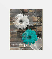 Teal Brown Wall Art Rustic Modern Daisy Flowers Home Decor Matted Picture