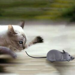 Toy Control Remote Pet Mouse Wireless Rat Cat Dog Mice Gift Novelty Funny Prank $10.00