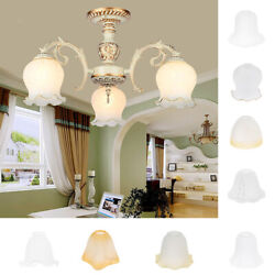 Frosted Glass Petal Replacement Shades for Home Bedroom Living Room $22.47