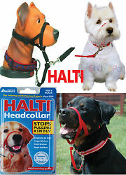 DOG HEAD COLLAR HALTI STOPS PULLING KINDLY FOR PET 5 SIZES INSTANT CONTROL  $16.14