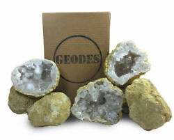 10 Break Crack Open Your Own Whole Moroccan Geodes WGift Box - 2